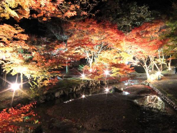 東山公園ライトアップ