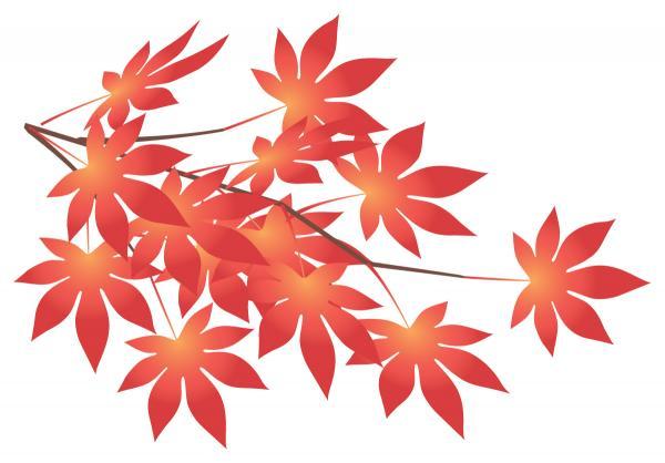 画像:紅葉